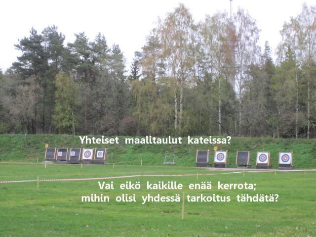 Suomi 100 vuotias. Vuonna 2017. Mihin yhdessä oikein tähdätään?